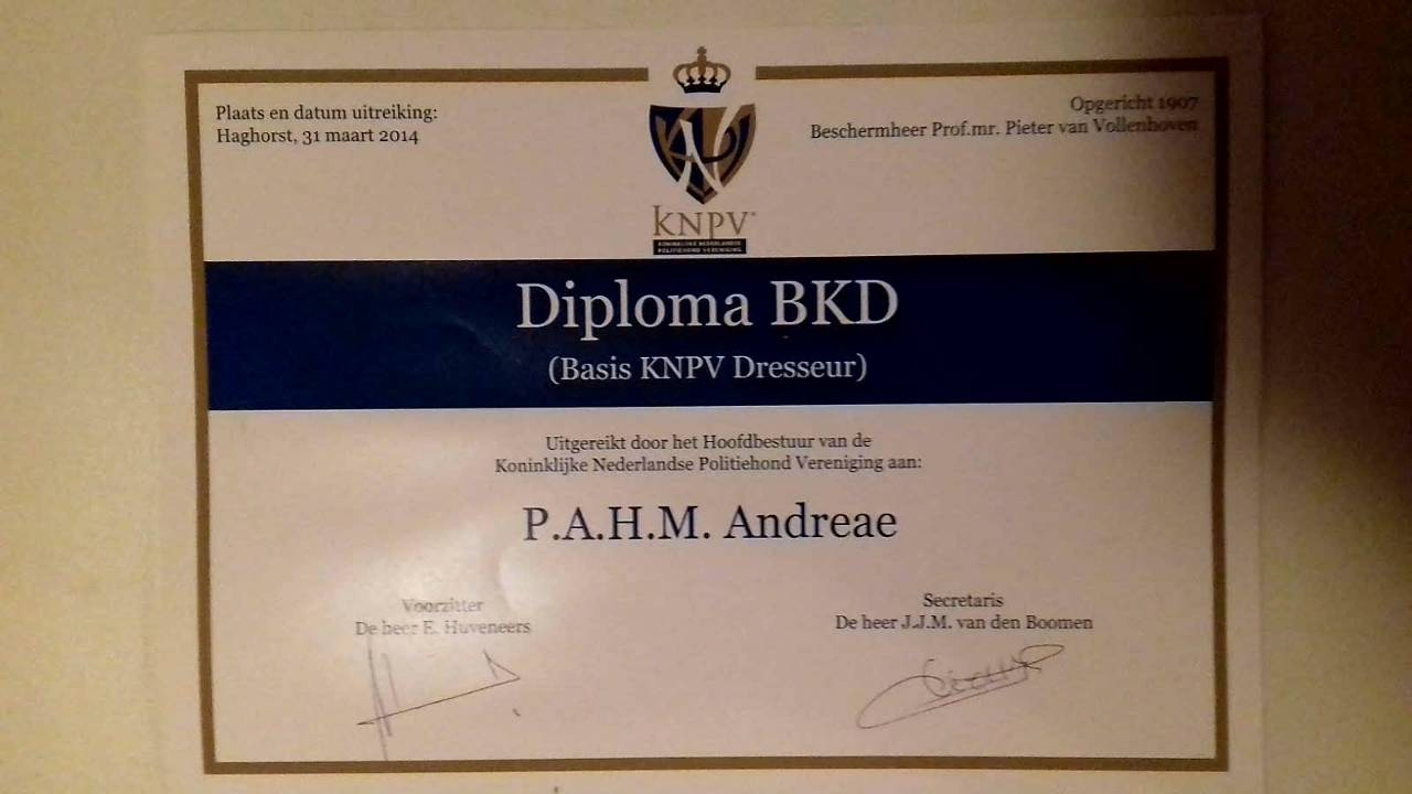 Protection dogs diploma