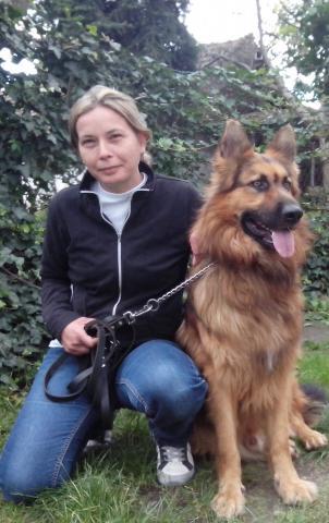 psi za licnu i porodicnu zastitu dresura i prodaja pasa cuvara